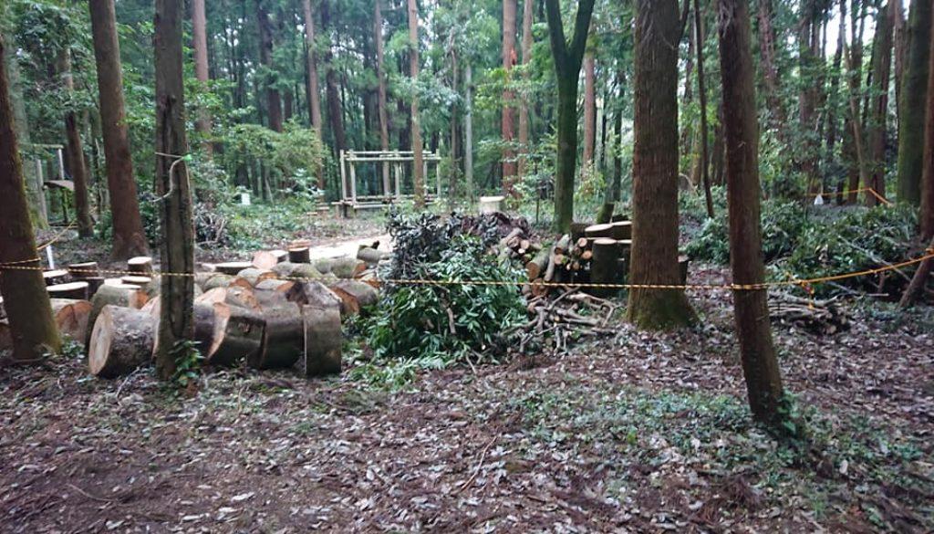 あやめガーデン・台風倒木処理~ツリークライミング~IN千葉県!